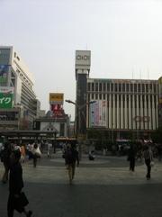 20120602-161246.jpg